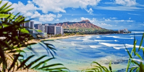 Whoot_hawaii
