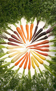 Whoot_635px-carrots_of_many_colors