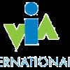 Big_via_logo-1